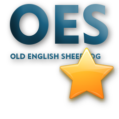 OES - Old English Sheepdog