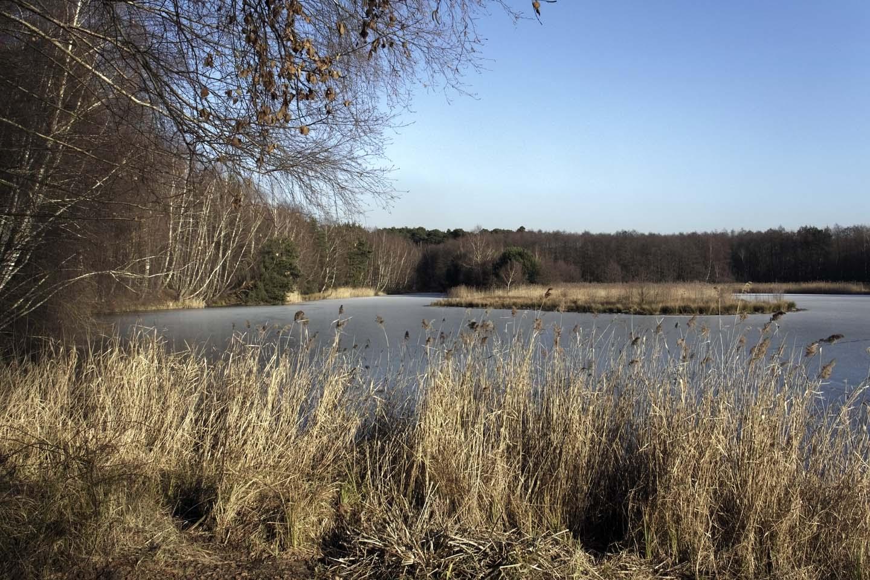 Lindensee